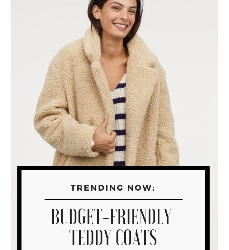 Trending Now-Budget Friendly Teddy Coats